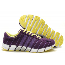 Кроссовки Adidas Climacool cc ride 2012 violet