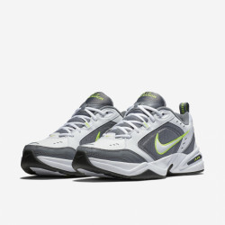 Nike Air Monarch IV White/green