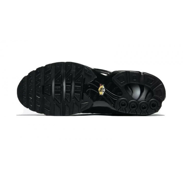 Кроссовки Nike Air Max Plus AJ2029 001